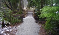 Coho Park little bridge 1