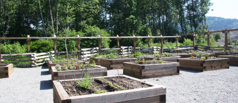 Squamish Community Garden Plots