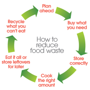 Food loop for consumers